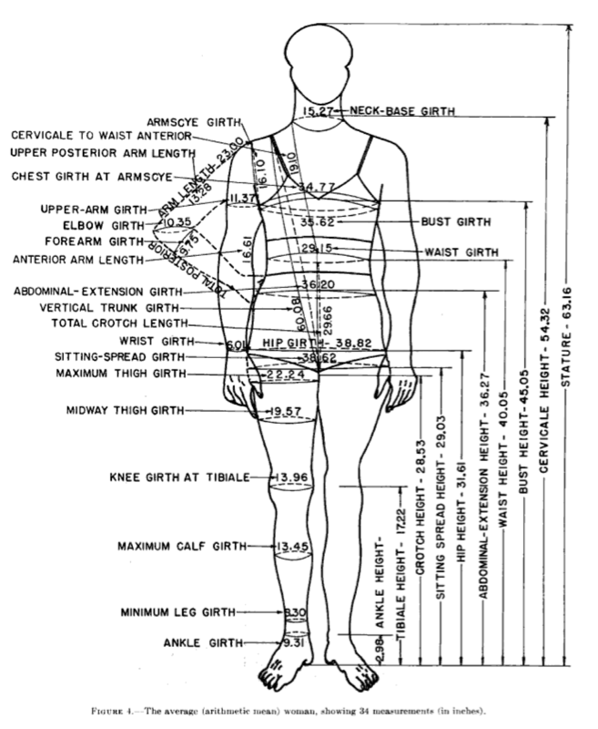 A short history of U S  white women's measurements used for